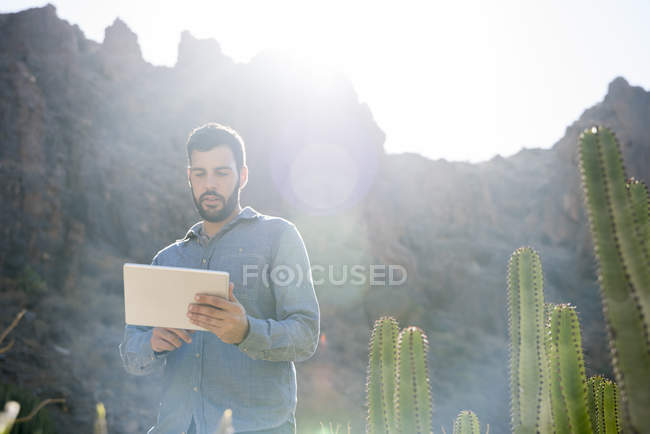 Молоді чоловіки мандрівного дивлячись на цифровий планшетний сонячної долини, Лас-Пальмас, Канарські острови, Іспанія — стокове фото