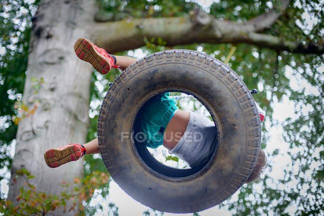 Низький кут зору хлопчик грав на шин гойдалки в саду — стокове фото