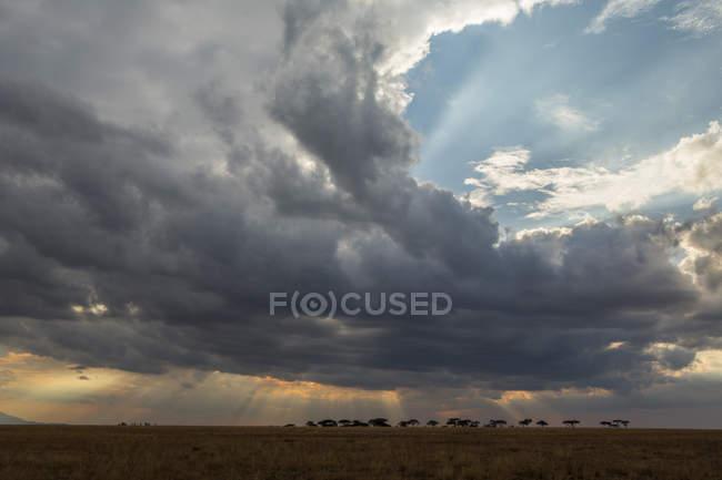 Vista panoramica, Arusha, Tanzania, Africa — Foto stock