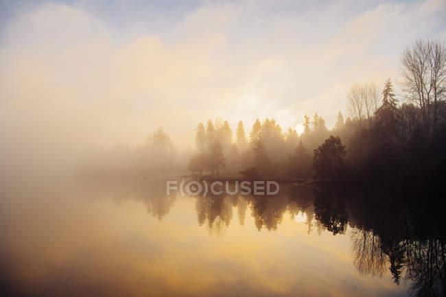 Puget Sound ao pôr do sol, Bainbridge, Washington, EUA — Fotografia de Stock
