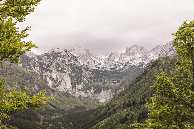 Paisagem vista do vale de florestas e montanhas, Mozirje, Brezovica, Eslovénia — Fotografia de Stock
