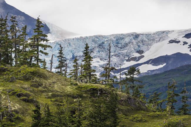 Vista panorâmica, Prince William Sound, Whittier, Alasca, Estados Unidos, América do Norte — Fotografia de Stock