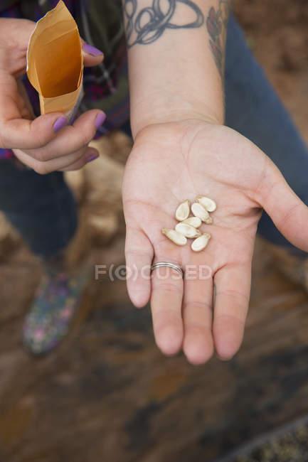 Recadrée vue de femme portant des graines de pastèque dans la paume de la main — Photo de stock