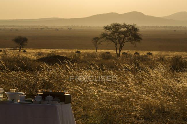 Parque Nacional de Tarangire, Tanzânia, África — Fotografia de Stock