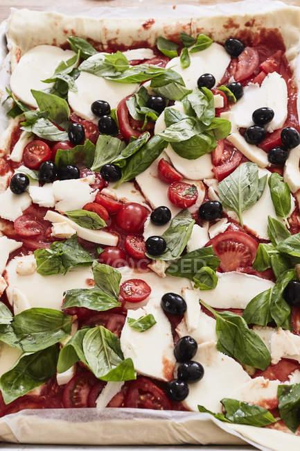 Preparato, pizza cruda, close-up — Foto stock