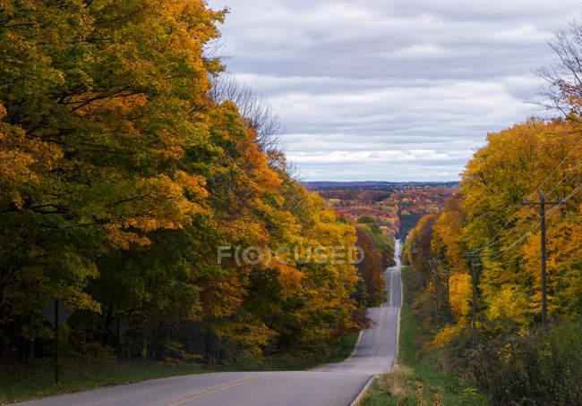 Arborizada estrada, outono, Harbor Springs, Michigan, Estados Unidos, América do Norte — Fotografia de Stock