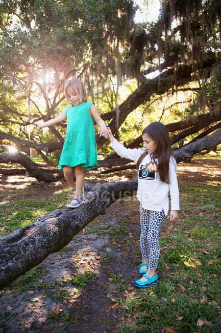 Duas meninas brincando no galho da árvore — Fotografia de Stock