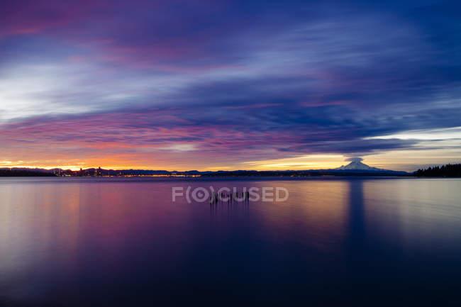 Tubos de madeira salientes da água ao pôr-do-sol, Bainbridge, Washington, Estados Unidos — Fotografia de Stock