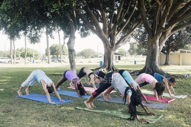 Школьницы, практикующие йогу вниз лицом собаки на школьной спортивной площадке — стоковое фото