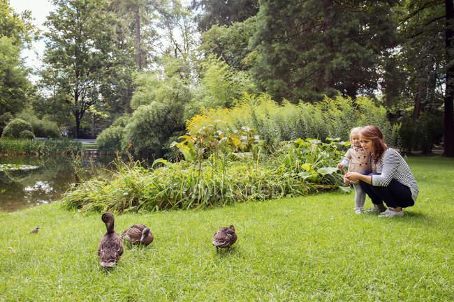 Mãe e filha de criança assistindo patos no parque — Fotografia de Stock