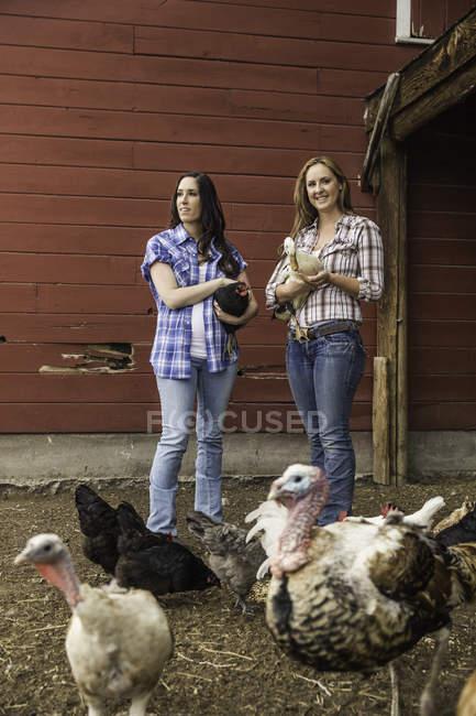 Retrato de jovem e sua irmã segurando um frango e pato no rancho, Bridger, Montana, EUA — Fotografia de Stock