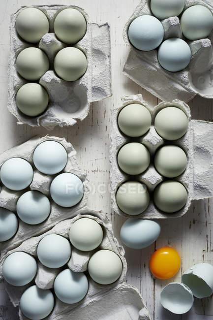 Вид синего и зеленого яйца куриные в лотки — стоковое фото