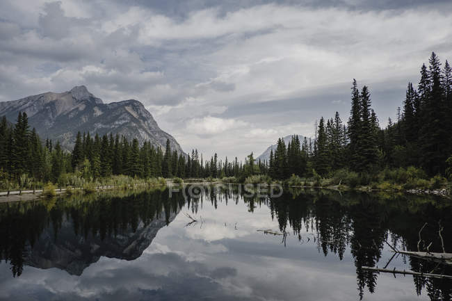 Reflection of mountain and trees in lake, Canmore, Canada, North America — Stock Photo