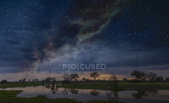 Зоряна ніч небо над болото, Окаванго Дельта, Ботсвана, Лімпопо, Південна Африка, Африка — стокове фото