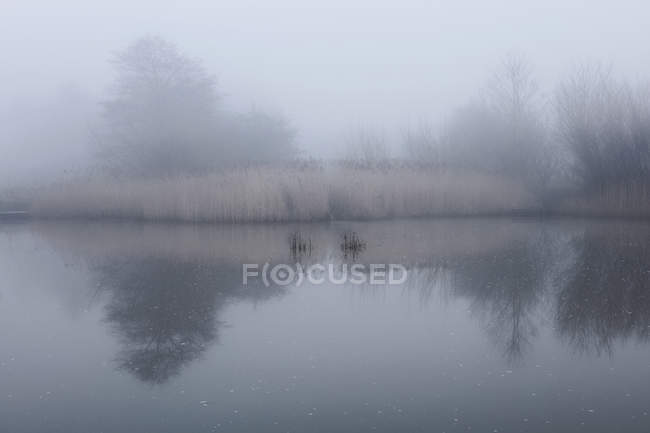 Scenic view of lake with mist, Houghton-le-Spring, Sunderland, UK — Stock Photo