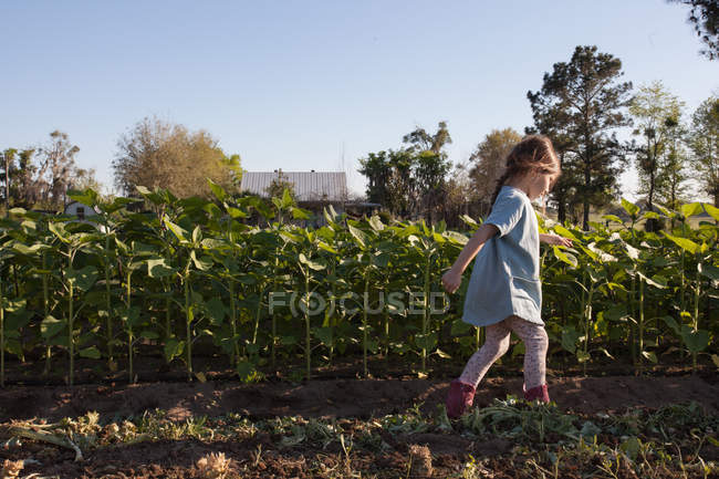 Jeune fille marchant à côté de cultures sur la ferme, vue latérale — Photo de stock