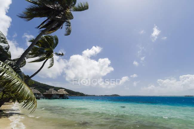 Palme e spiaggia lontana resort dello stilt case, Bora Bora, Polinesia francese — Foto stock