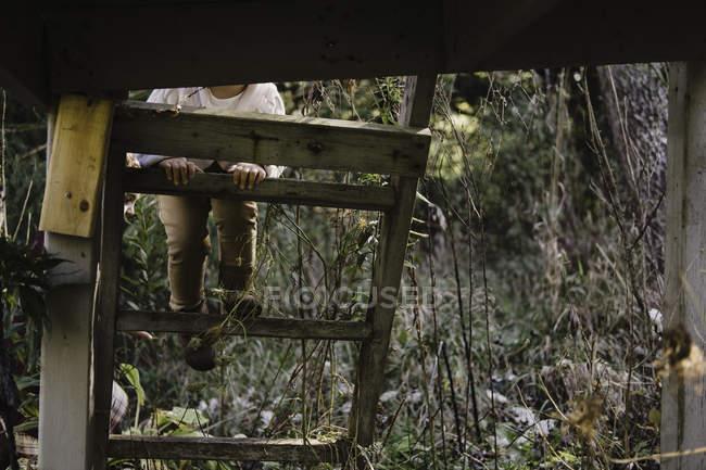 Куповані подання дівчина сходження кроки дерево будинок — стокове фото