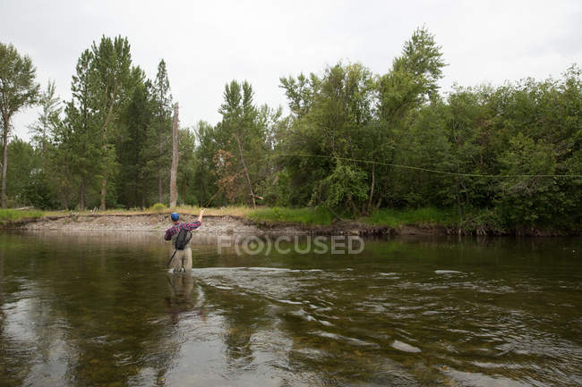 Rear view of man fishing in river, Clark Fork, Montana — Stock Photo