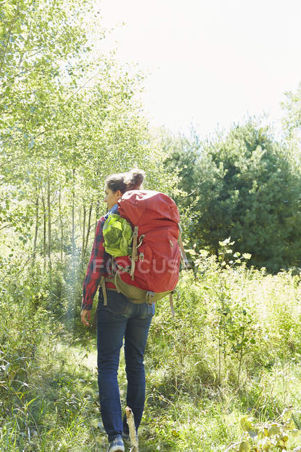 Rear view of woman with backpack hiking in forest, Colgate Lake Wild Forest, Catskill Park, New York State, USA — Stock Photo