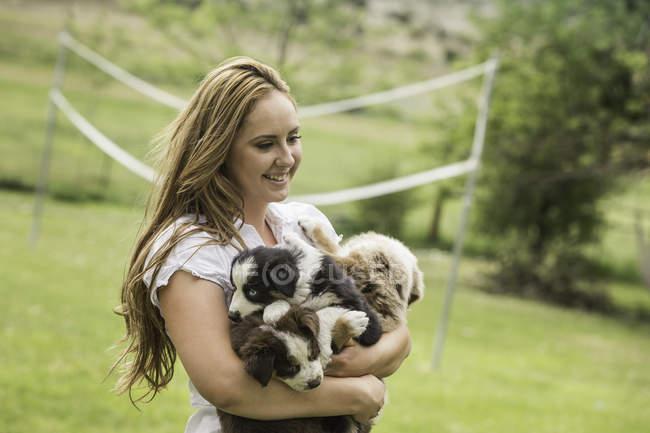 Молодая женщина держит щенков овчарки на ранчо, Бриджер, Монтана, США — стоковое фото