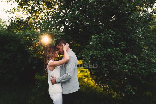Romántica pareja joven cara a cara en el parque al atardecer - foto de stock
