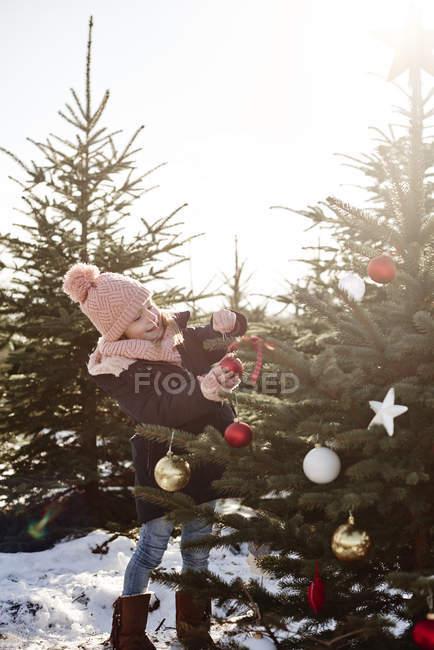 Girl poner adornos en el árbol de Navidad del bosque - foto de stock