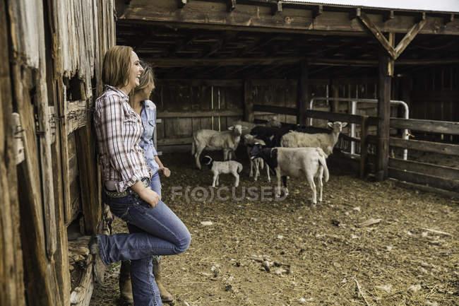 Due giovani donne appoggiate al ranch chattano, Bridger, Montana, USA — Foto stock