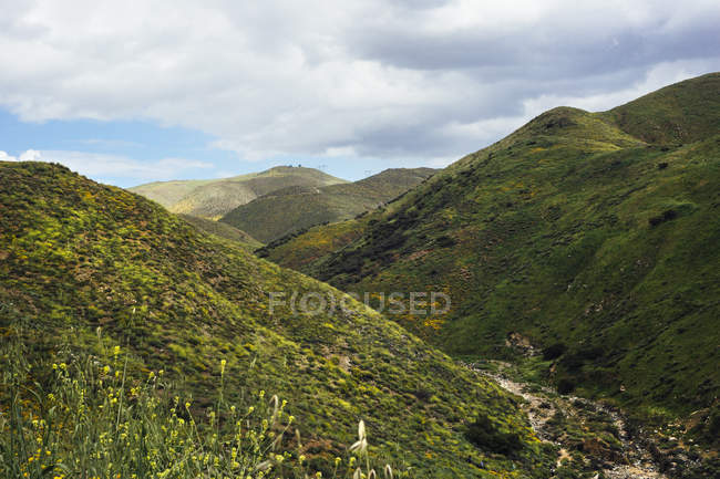 Valley landscape with californian poppies (Eschscholzia californica), North Elsinore, California, USA — Stock Photo