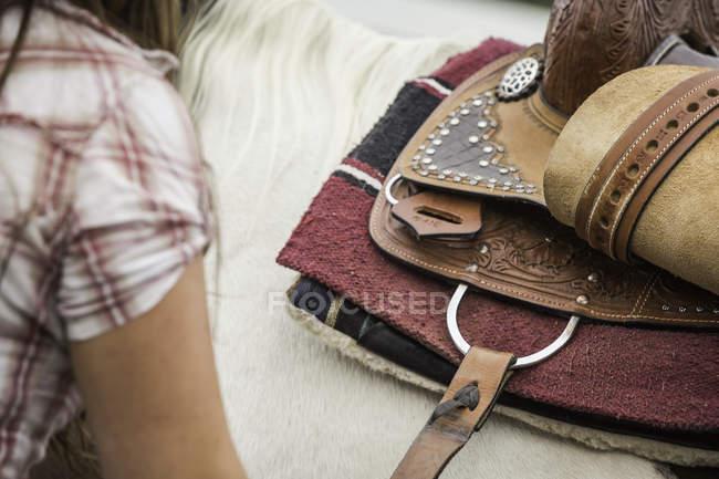 Young woman saddling horse, close-up — Stock Photo