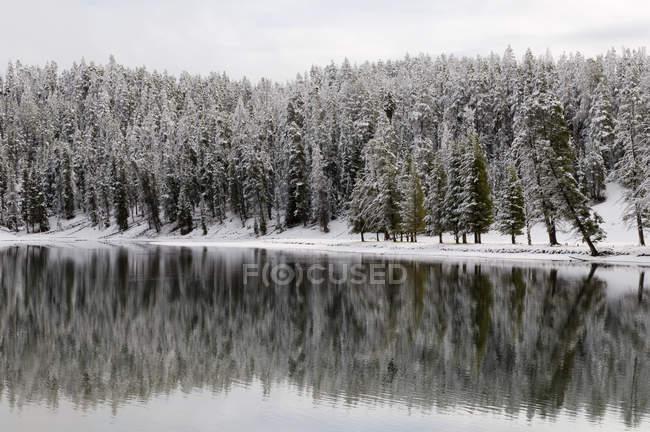 Yellowstone River in winter, Yellowstone National Park, Wyoming, USA — Stock Photo
