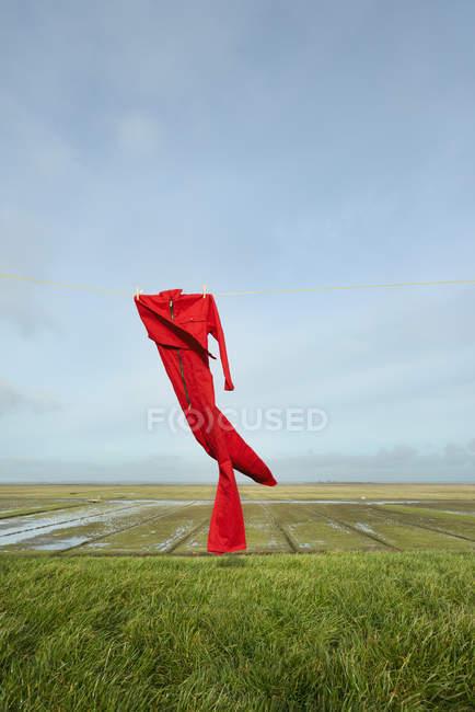 Global na linha de lavagem, soprando no vento, no topo do dique, além do Waddensea, Holwerd, Friesland, Países Baixos — Fotografia de Stock