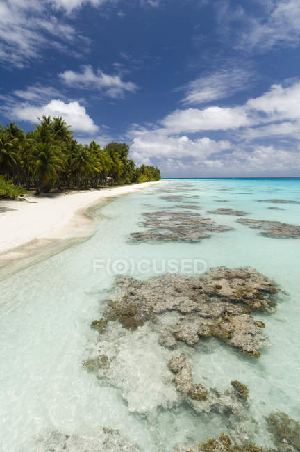 Playa de arena blanca, palmeras y mar azul, Fakarava, Archipiélago de Tuamotu, Polinesia Francesa - foto de stock