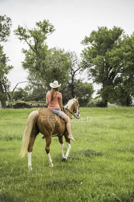 Молодая женщина верхом на лошади, вид сзади — стоковое фото