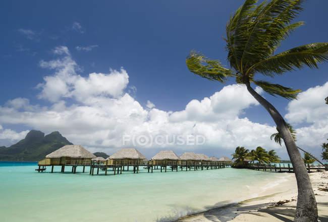 Palme e palafitte località balneare, Bora Bora, Polinesia Francese — Foto stock