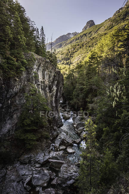 Landscape view of forest gorge and river Azul, Cajon del Azul near El Bolson, Patagonia, Argentina — Stock Photo