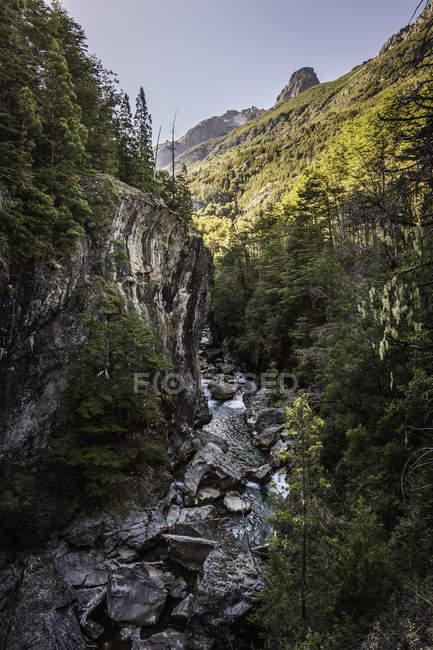 Vista del paisaje de bosque quebrada y Río Azul, Cajon del Azul cerca de El Bolson, Patagonia, Argentina - foto de stock