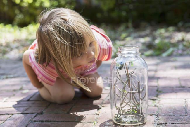 Девушка склоняется вперед, чтобы посмотреть гусеницу в банке — стоковое фото