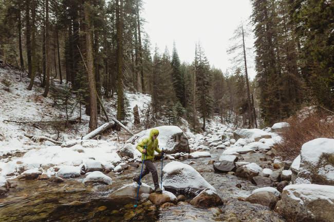 Giovane escursionista di sesso maschile che scavalca le rocce del fiume nella foresta innevata, Sequoia National Park, California, USA — Foto stock
