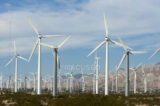 Observing view of Wind Farm, Palm Springs, California, USA — Stock Photo