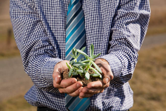 Man in plaid shirt holding green sprout — Stock Photo