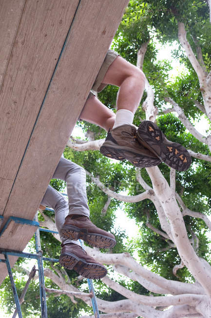 Homens em botas de trabalho sentado em andaimes sob a coroa de árvore — Fotografia de Stock