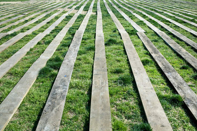Diminishing perspective of wooden planks on grass — Stock Photo