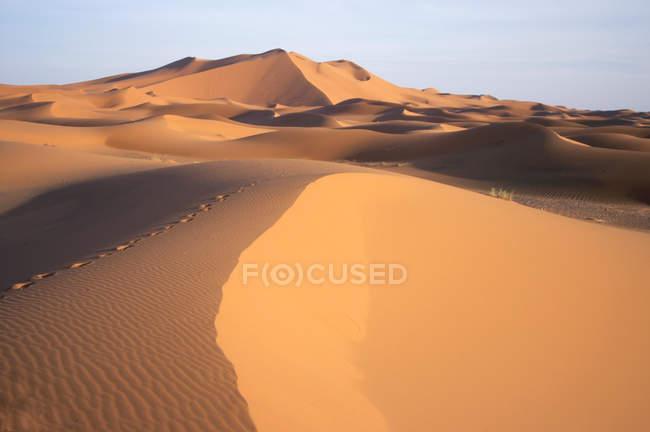 Pegadas no deserto, Marrocos, norte de África — Fotografia de Stock