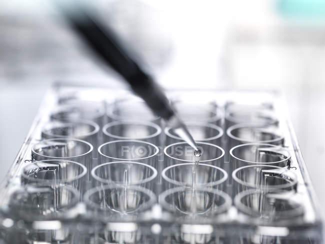 Amostra de pipetagem cientista em um prato bem multi durante um experimento em laboratório — Fotografia de Stock