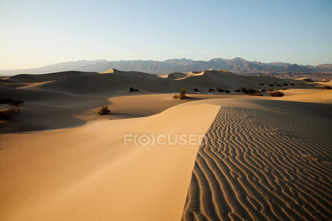 Dunes de sable plat Mesquite, Death Valley, Nevada, Usa — Photo de stock