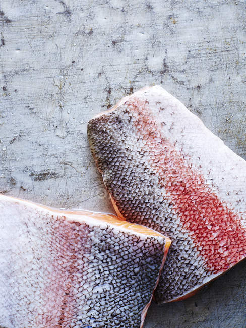 Still life of two pieces of ocean trout, overhead view — Stock Photo