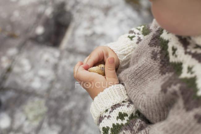 Niño con concha, recortada cerca para arriba - foto de stock