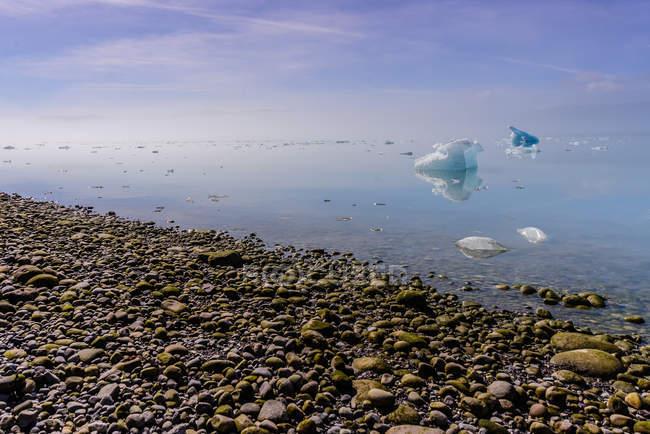 Piccoli iceberg in mare, Narsaq, Vestgronland, Groenlandia — Foto stock