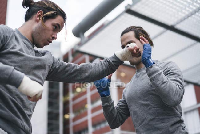 Ідентичні чоловічого боксерів навчання на відкритому повітрі — стокове фото